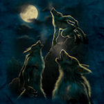 3 Werewolf Moon T-Shirt