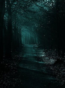 a scary road in moonlight